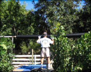 12-claude-netting